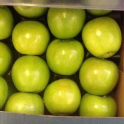 Yellow cherry tomatoes tesco