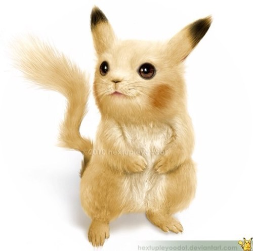 realistic pokemon realpokemonart twitter
