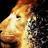 lionaround