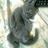 aap_mayumi's avatar'