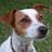 Bernard Hughs (@PackLeader01) Twitter profile photo