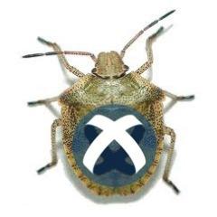Titanium Bugs