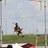 Sean Young - skypolevaulter
