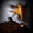 BurungGaruda_16