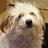 @RosemaryAune Profile picture
