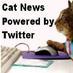 Bob The Cat :)