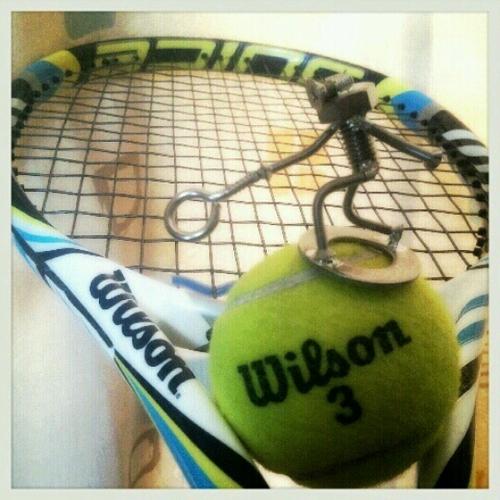 tennismonkey01
