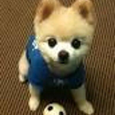 かわいい犬猫bot