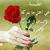 @Tamay37
