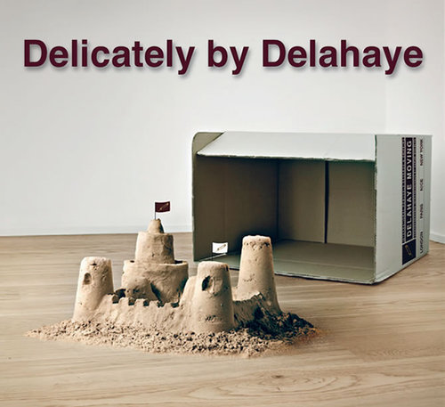 Logo de la société Delahaye Moving