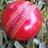 CricketersFl retweeted this