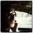 (((Patrice Ryan)))'s Twitter avatar