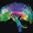 Neuropsicologia COPC