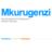 Mkurugenz1