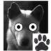 @roaring_dog