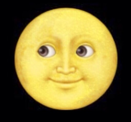 The face on the moon
