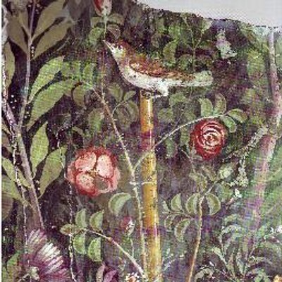 rosesouslapluie