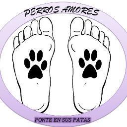@PerrossAmores