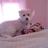 aunt_tricia's avatar