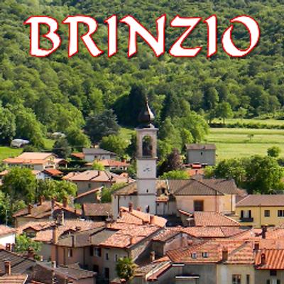 Risultati immagini per BRINZIO