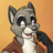 tilton_raccoon