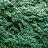 lukerbarley