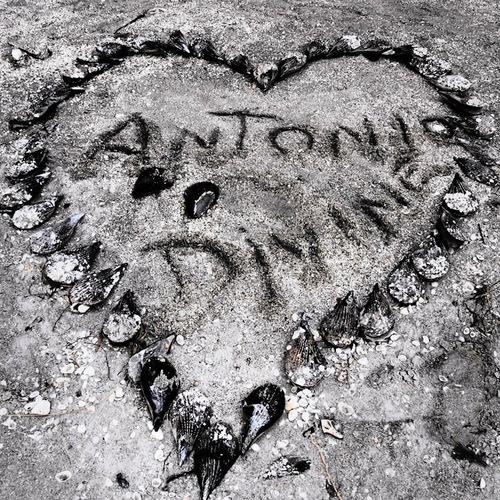 Antonio Divine