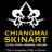 cm_skinart