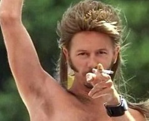 an analysis of the movie joe dirt Joe dirt movie reviews & metacritic score: the year is 1975 and little joe dirt is  dumpster diving at a grand canyon tourist stop after gorging himself on h.