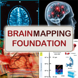 Brain Mapping Fdn.