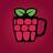 RaspberryPint