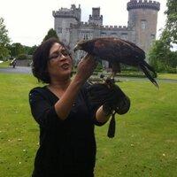 Aneesha Baig ( @aneeshabaig ) Twitter Profile
