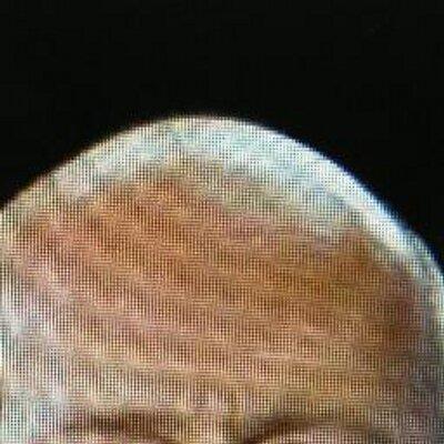 ブルースの頭 @nohage1