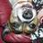 SlothfulToad