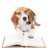BeagleBookkeep