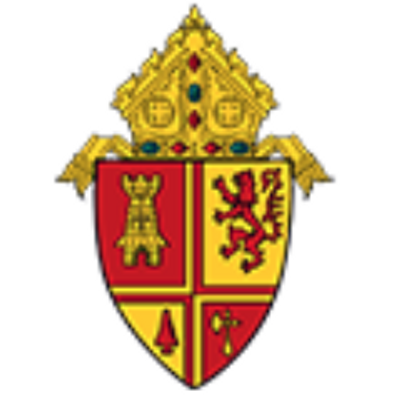St pete diocese