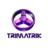 Trimatrik Multimedia