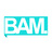 Photo de profile de BAM.