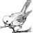 Cockney Sparrow
