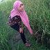 @ecy_dsy