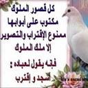((( ابوريان  ))) (@0554310a) Twitter