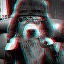 Dog (@00Leonova) Twitter