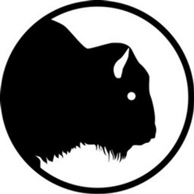 Buffalo 8 (@Buffalo8Pro) Twitter profile photo