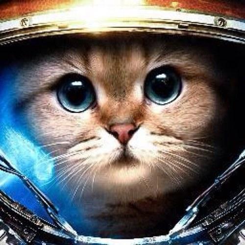 картинки кот космонавт