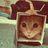 yunquevi's avatar'