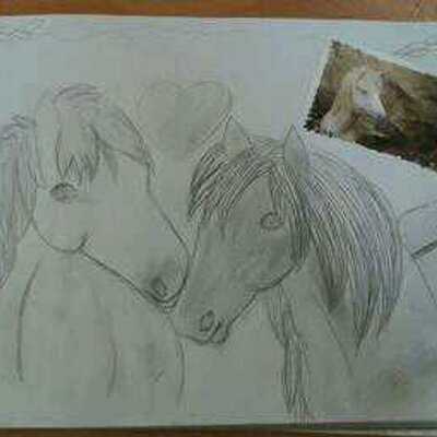 Fonkelnieuw Paarden tekening (@paardentekening) | Twitter KR-75