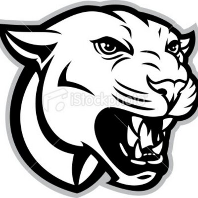 Hazleton cougars