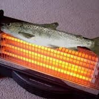 Fish on a heater fishonaheater1 twitter for Fish house heaters