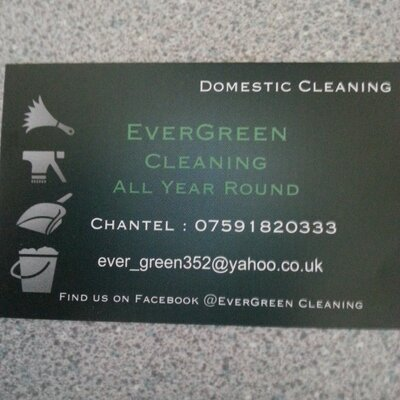 evergreen cleaning