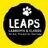 #LEAPS